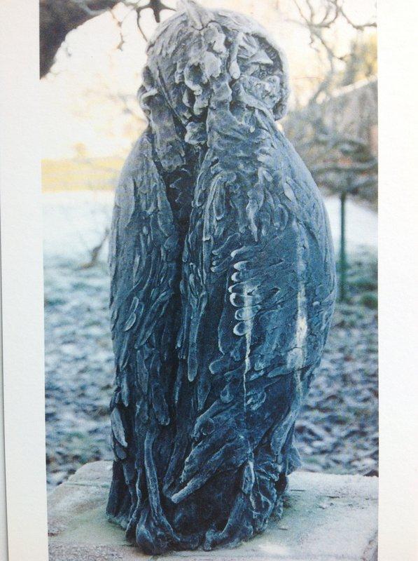 Chatsworth Night Owl<span>Copyright Susan Bacon</span>