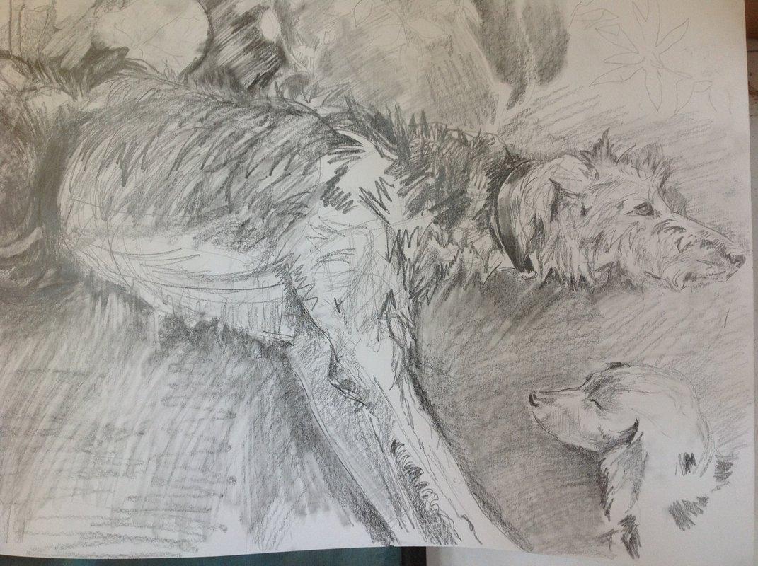 Dog Drawing<span>Copyright Susan Bacon</span>