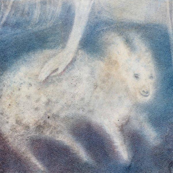 Sacred Lamb