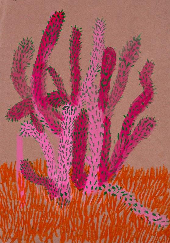 Cactus<span>Copyright Holly Froy</span>