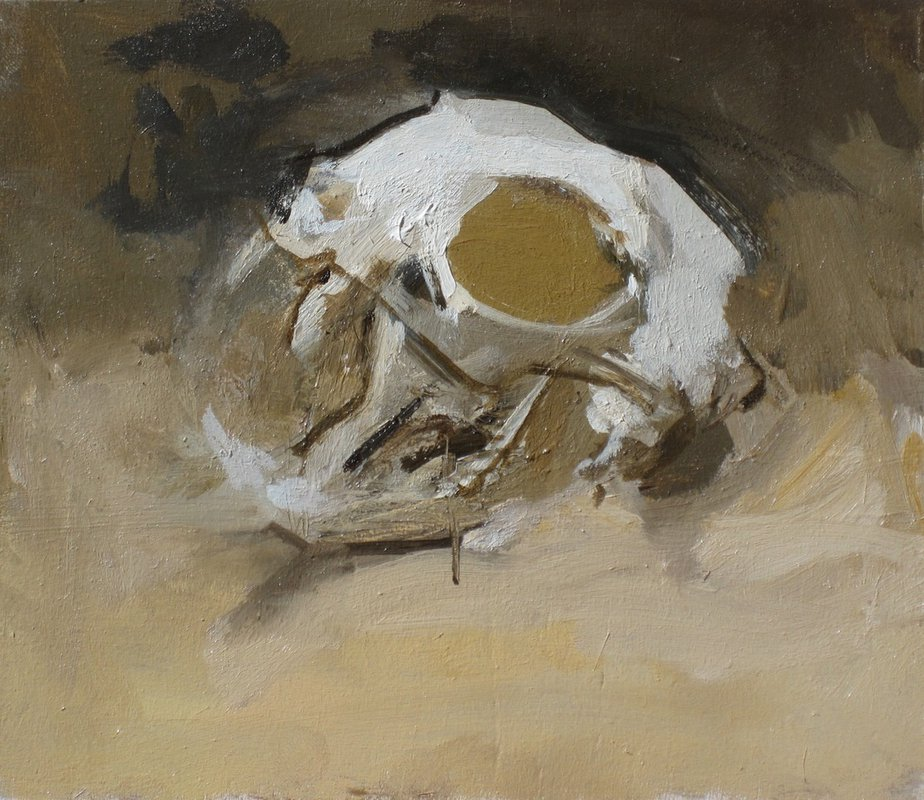 Cat Skull, 2012<span>Copyright Robert Dukes</span>