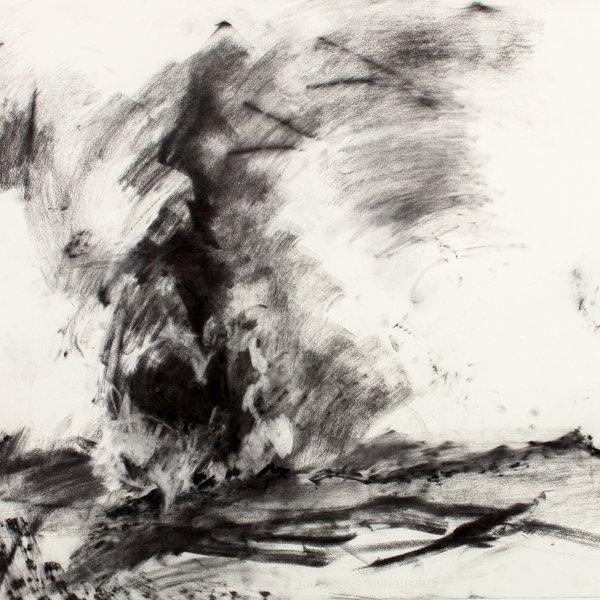 Emerging Fire in the Landscape, Pignano