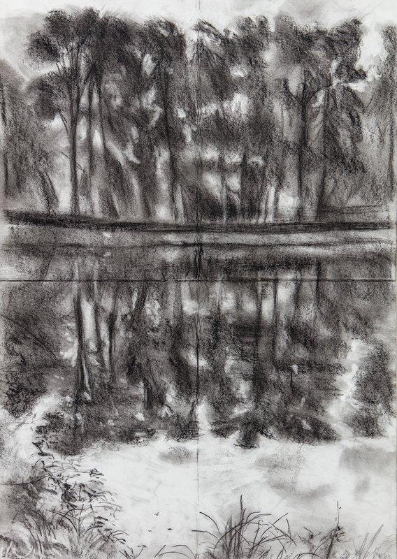 Lake in Normandy<span>Copyright Mary Herbert</span>