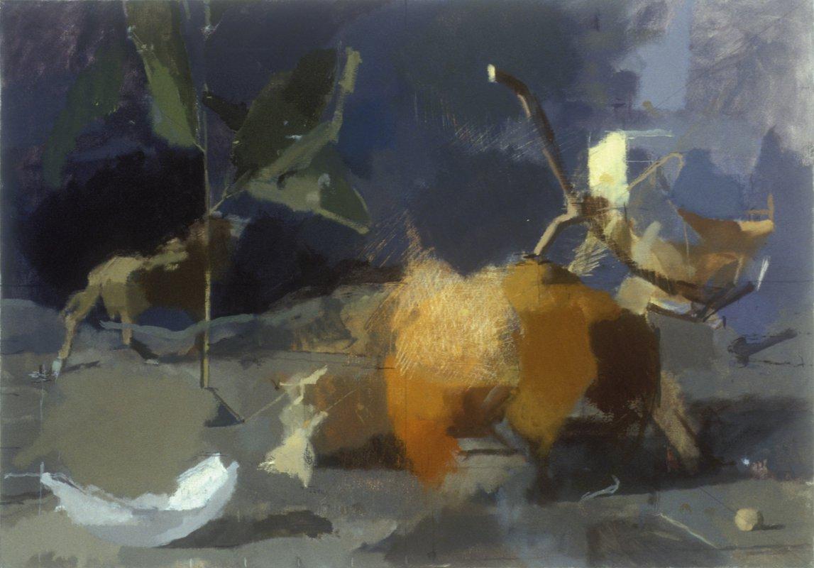 Orange & Wilderbeest<span>Copyright Claudia Carr</span>