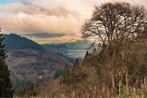 Hafod Wales 1