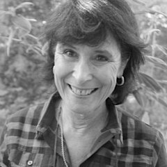 Linda Heathcoat-Amory