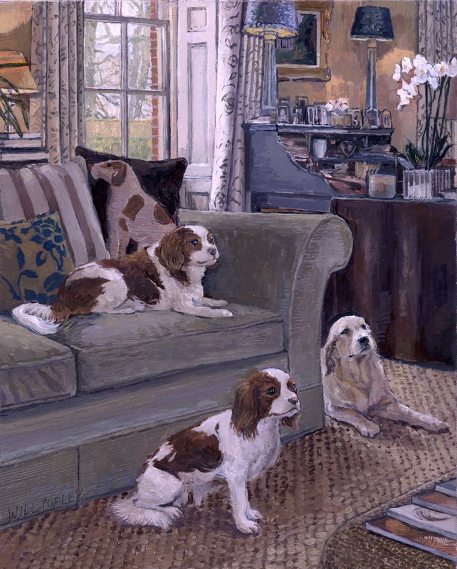 Sanster Dogs<span>Copyright Will Topley</span>