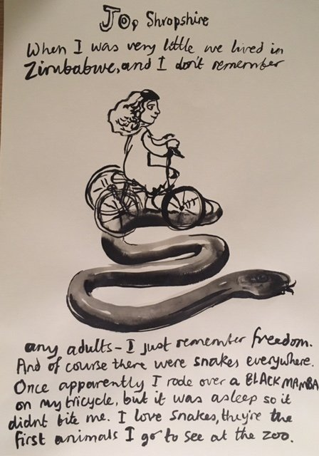 From 'stories collected live in ink' an ongoing project. Black Mamba<span>Copyright Sophie Herxheimer</span>