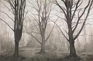 George Shaw in-conversation with William Feaver | The Royal Drawing School