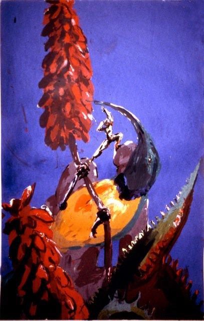 Sunbird sips- In The Land Of Rocks<span>Copyright Maggie Jennings</span>