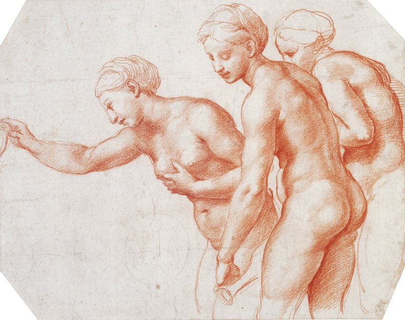 The Renaissance Nude - Lucy Chiswell