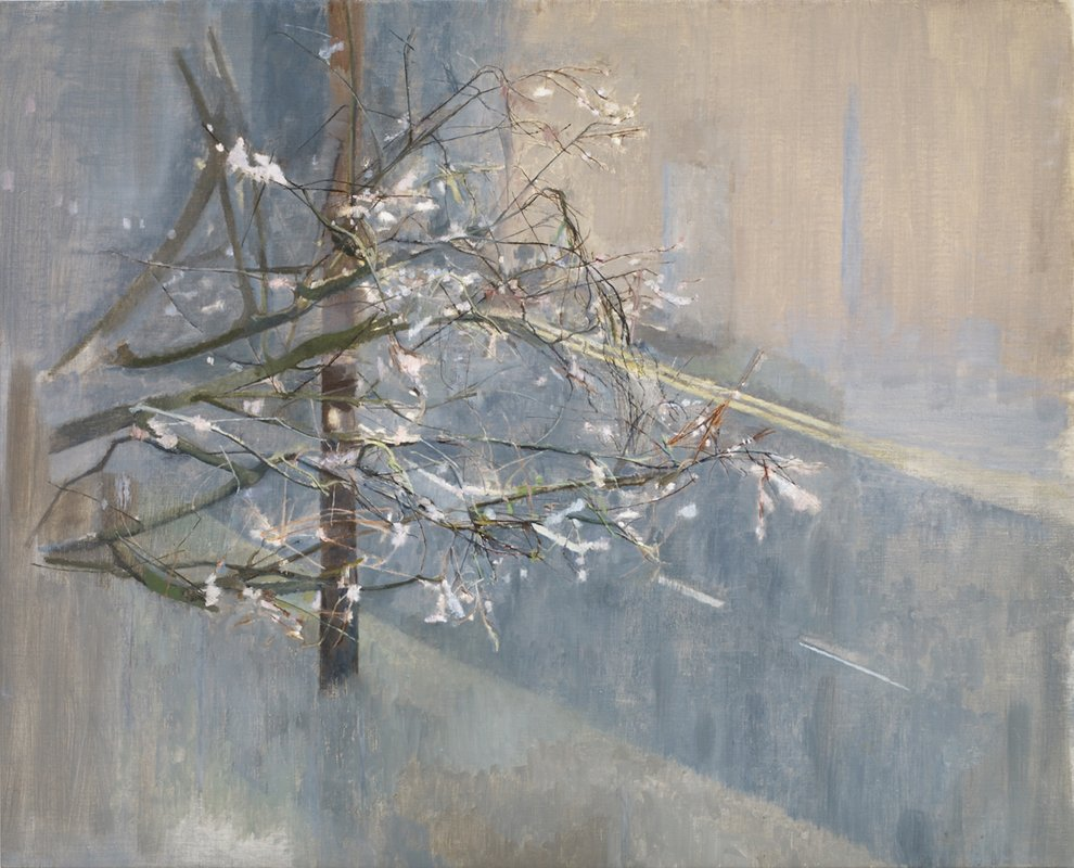 Town Light Winter<span>Copyright Charlotte Verity</span>