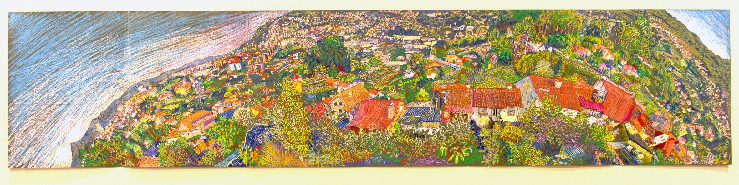 View Over Castrelos Fields<span>Copyright Josias Figueirido</span>