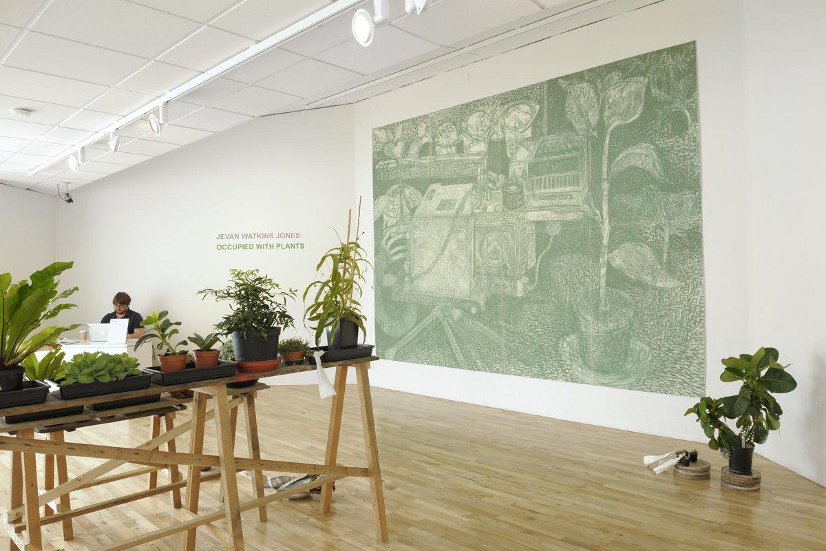 Plants Have No Use for Green<span>Copyright Jevan Watkins Jones</span>
