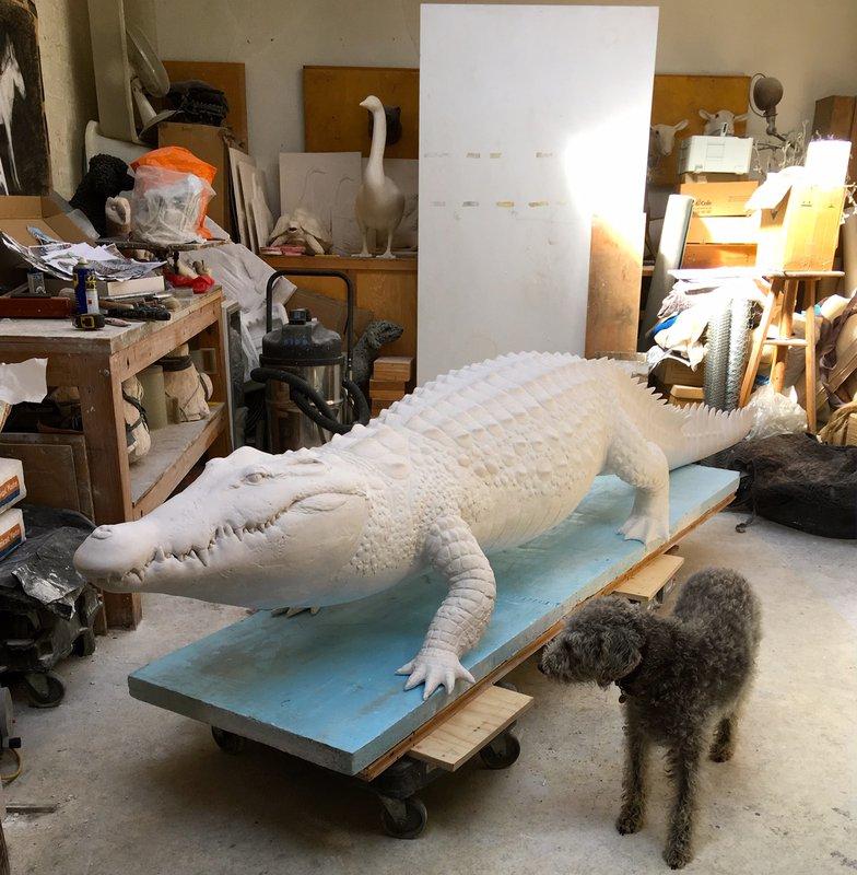 Croc leaving studio<span>Copyright Dido Crosby</span>