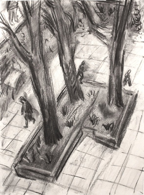 Southbank Trees<span>Copyright Henry Gibbons Guy</span>