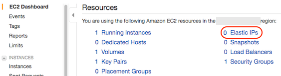 AWS console screen shot, Elastic IPs page