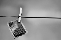 Tea bag hanging on a washing line