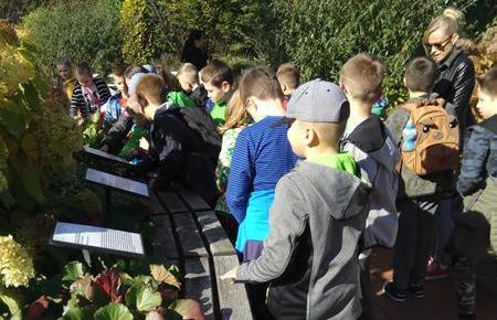 Wycieczka klasy 3b do Arboretum image