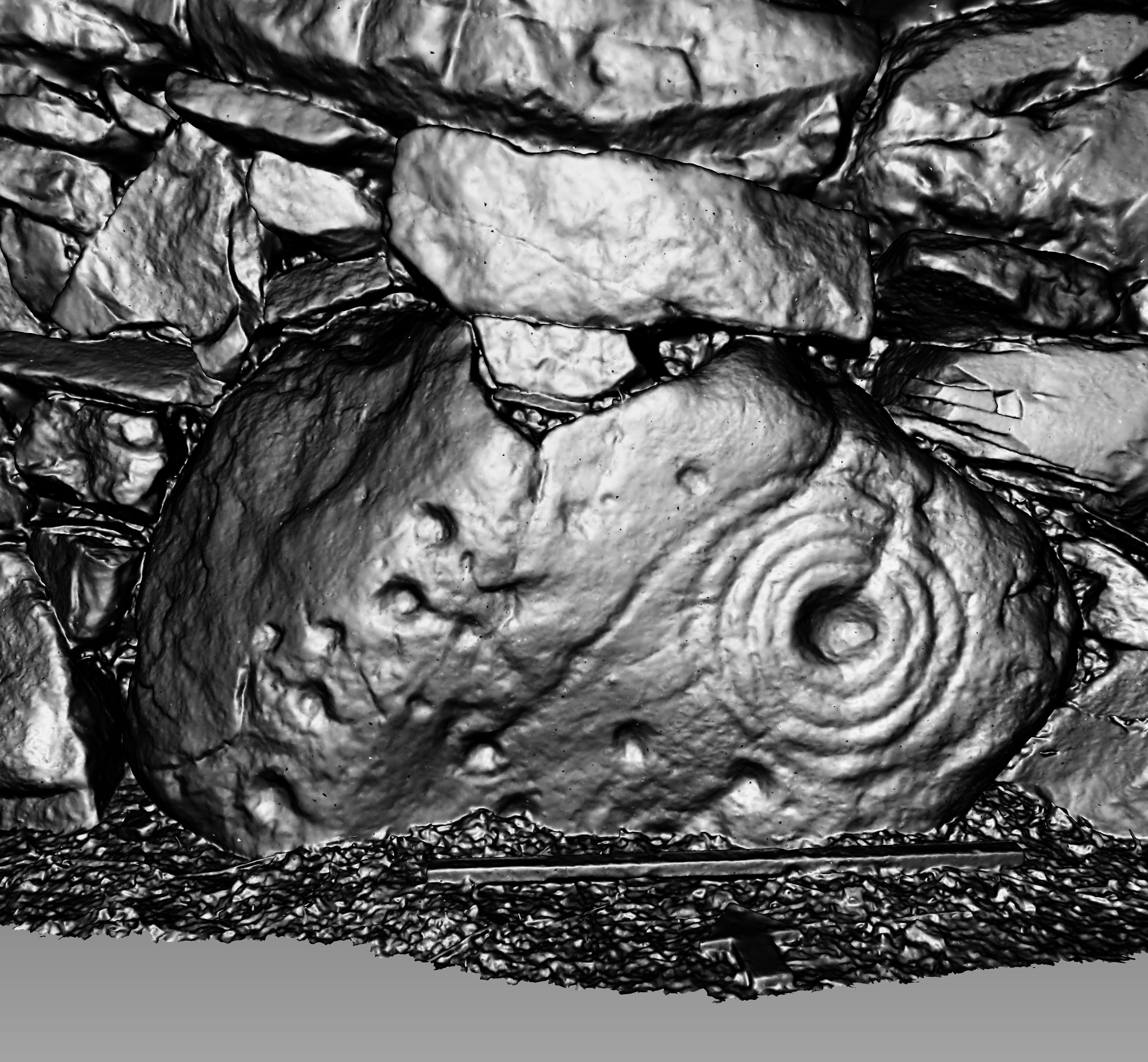 TEALING 1: 3D Model Screenshots
