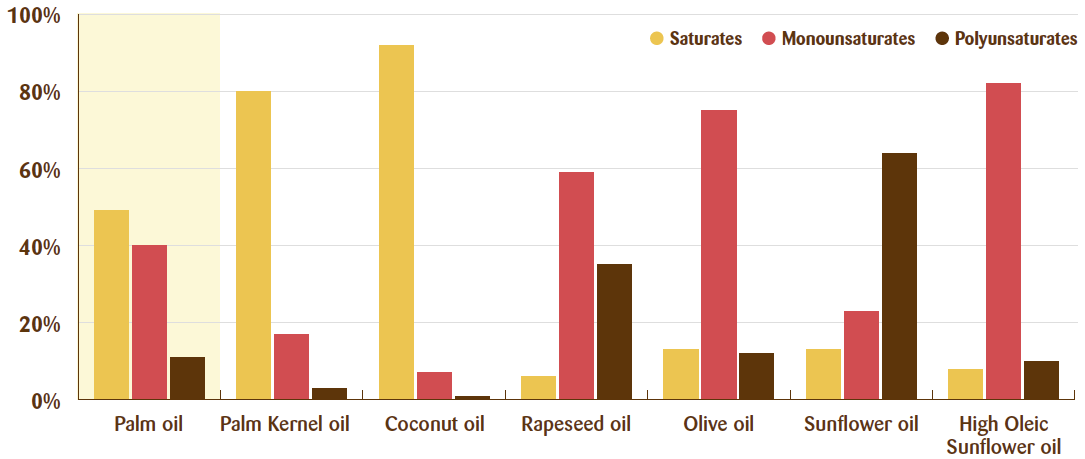 How veg oils are composed