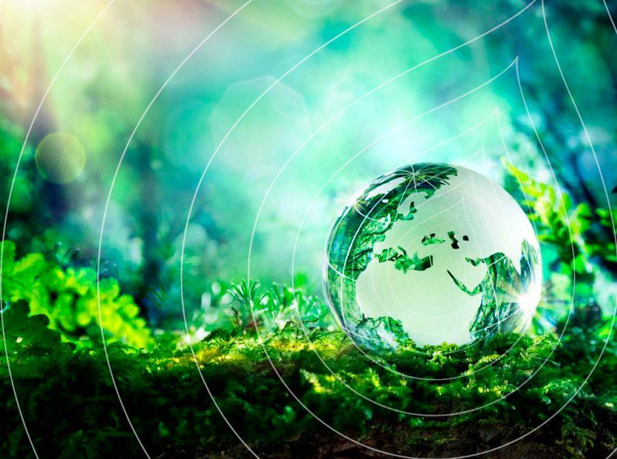 Sustainability banner Ripple