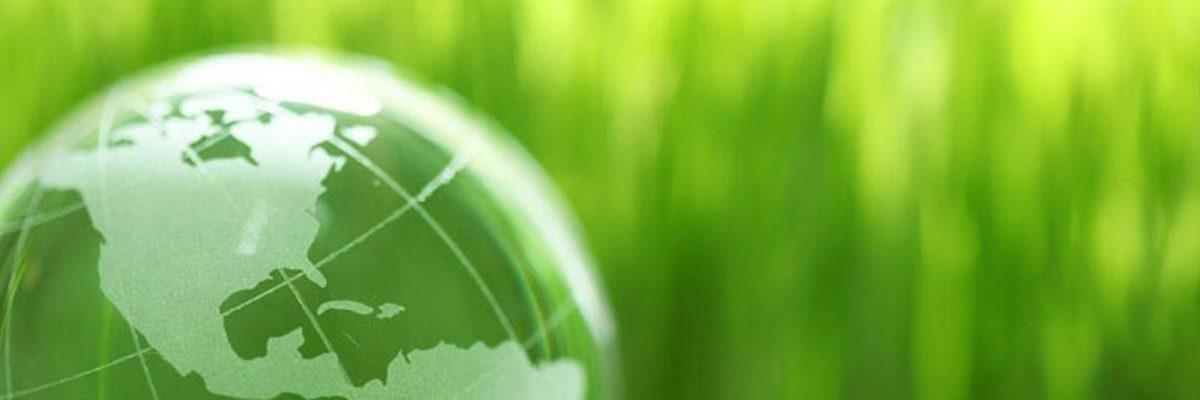 Green sustainability News Story
