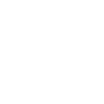 Digital overlay