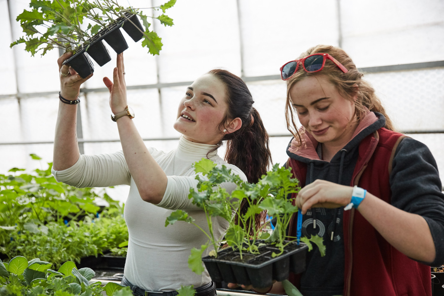 two female students studying plants
