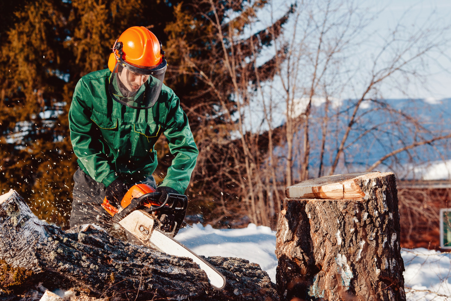lumberjack worker with chainsaw in his hands saws fallen tree, chips and dust fly upwards, against blue sky.