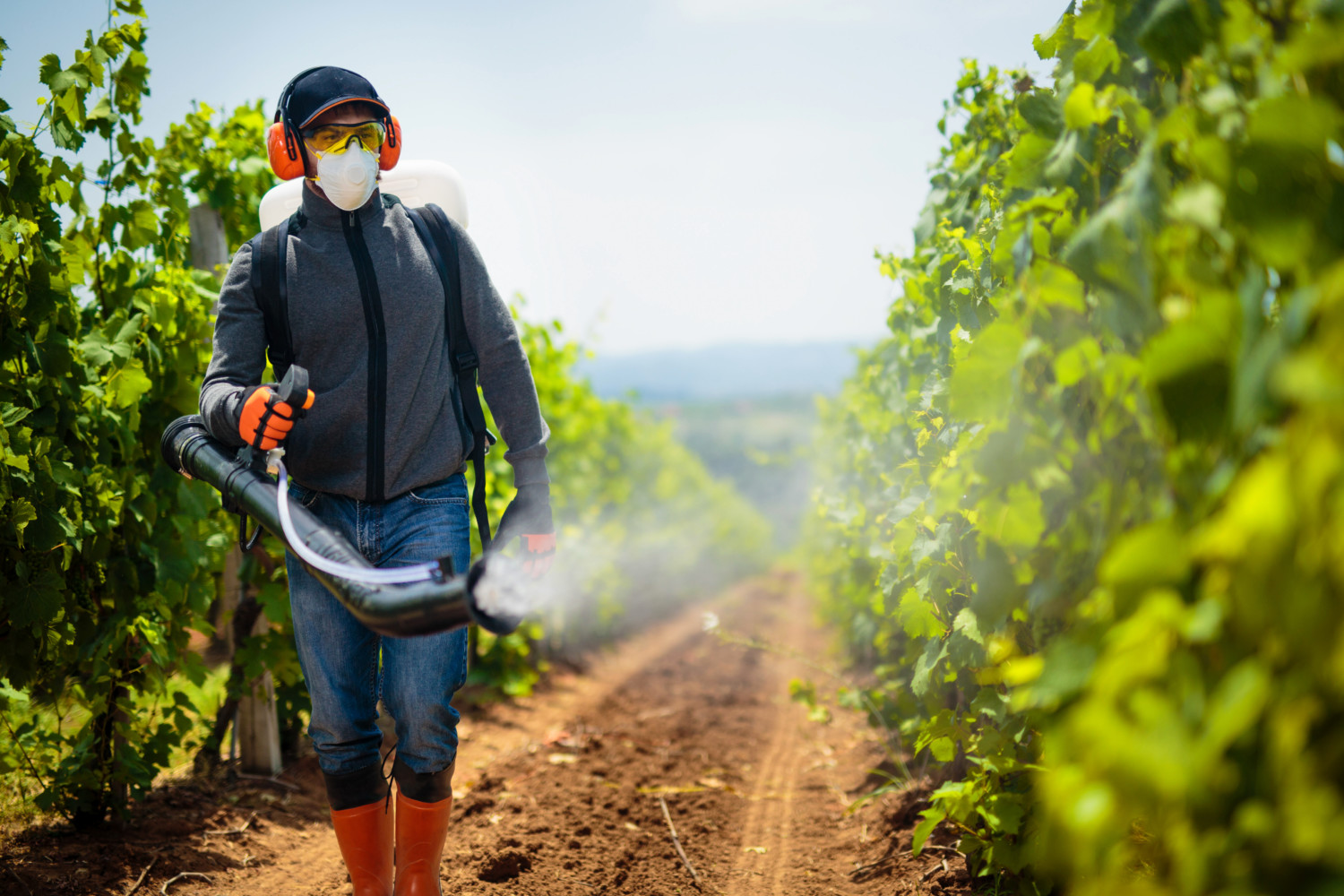 Agriculture worker. Young farmer spraying pesticides.