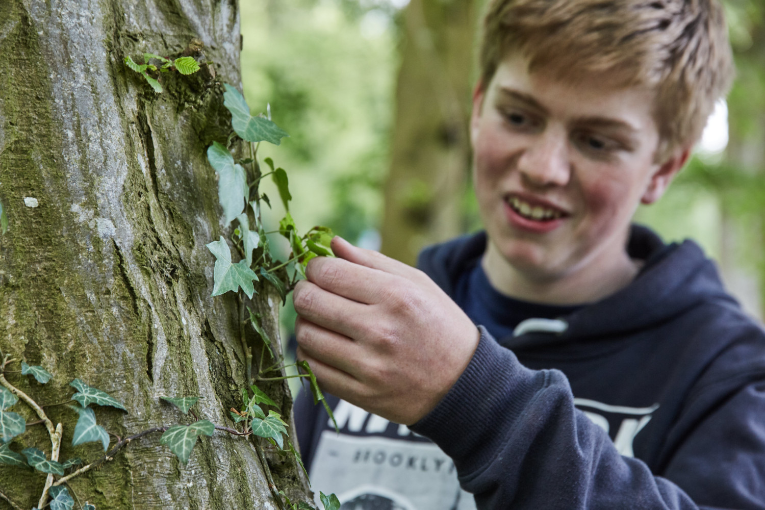 male student outdoors examining the tree