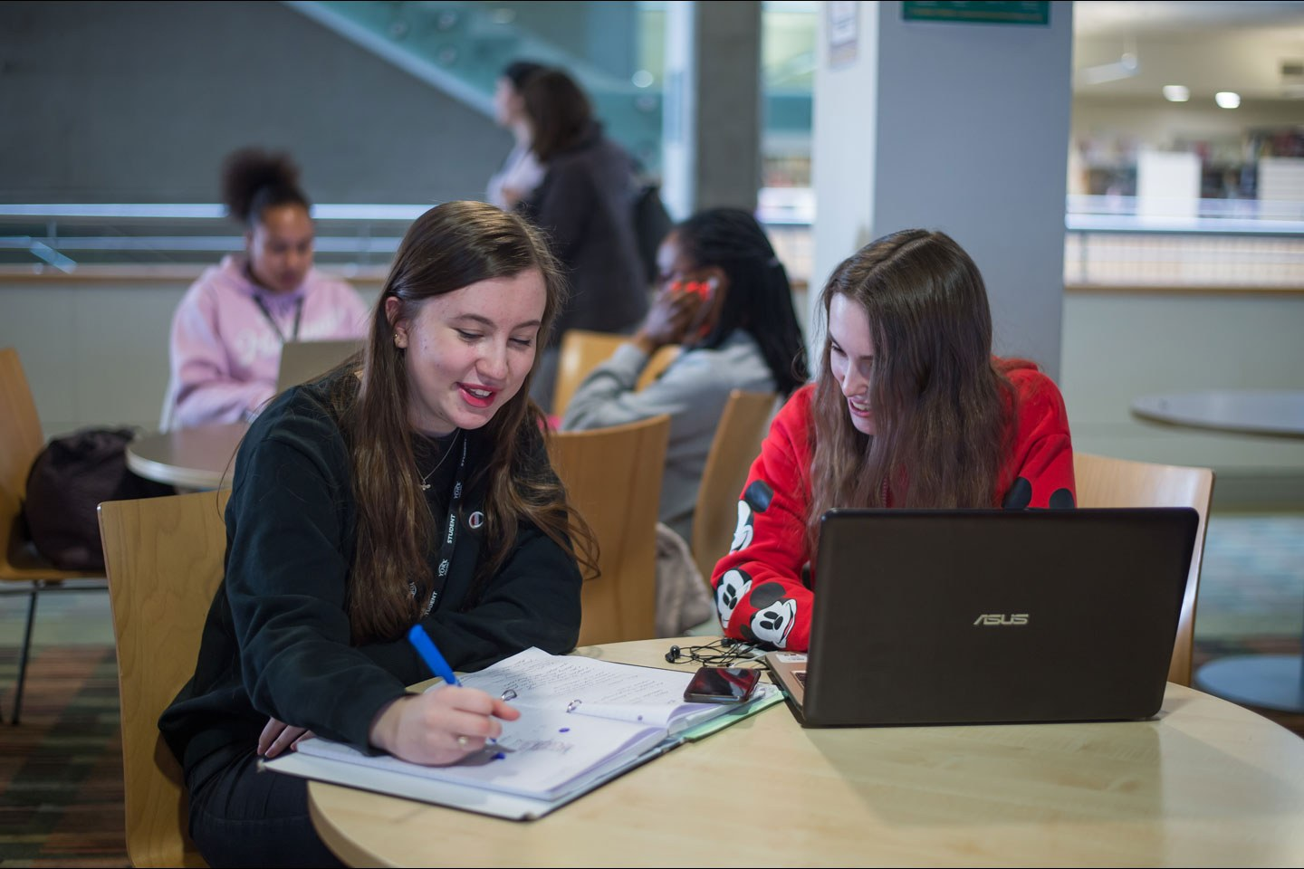 Two students working in the Learning Resource Centre