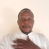 View Ahimbisibwe's profile