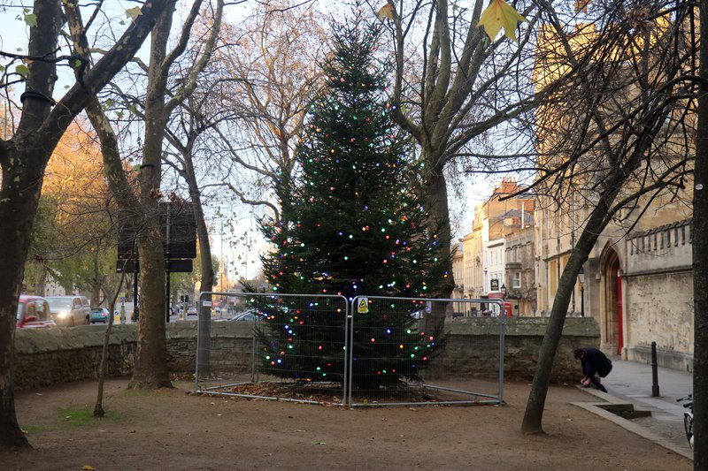 Christmas Tree in St Giles
