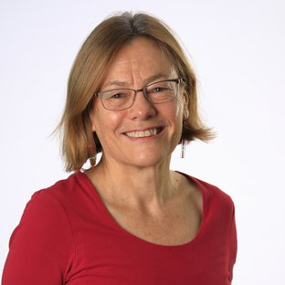 Professor Rosalind Harding