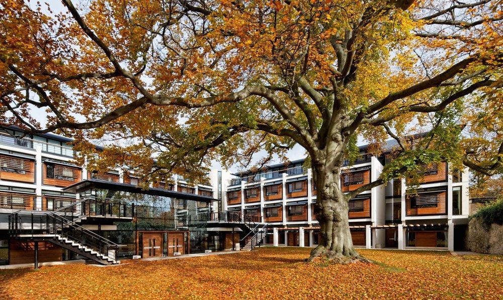 Kendrew Quad in autumn
