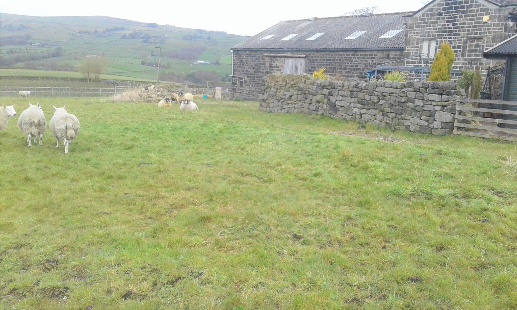 5 bedroom barn character property SSTC in Todmorden - Photograph 14
