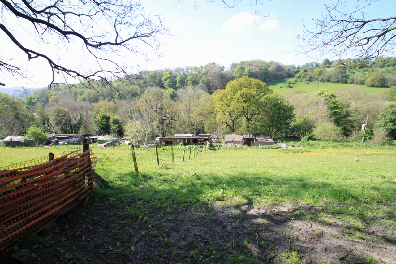 Land For Sale - Photograph 8