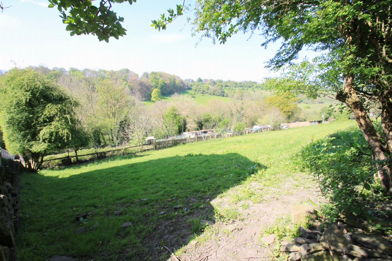 Land For Sale - Photograph 10
