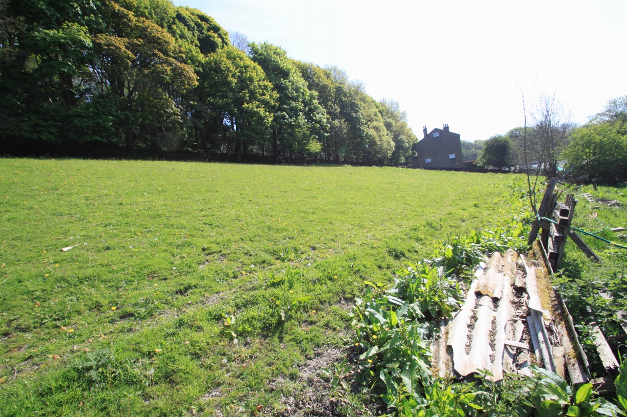 Land For Sale - Photograph 12