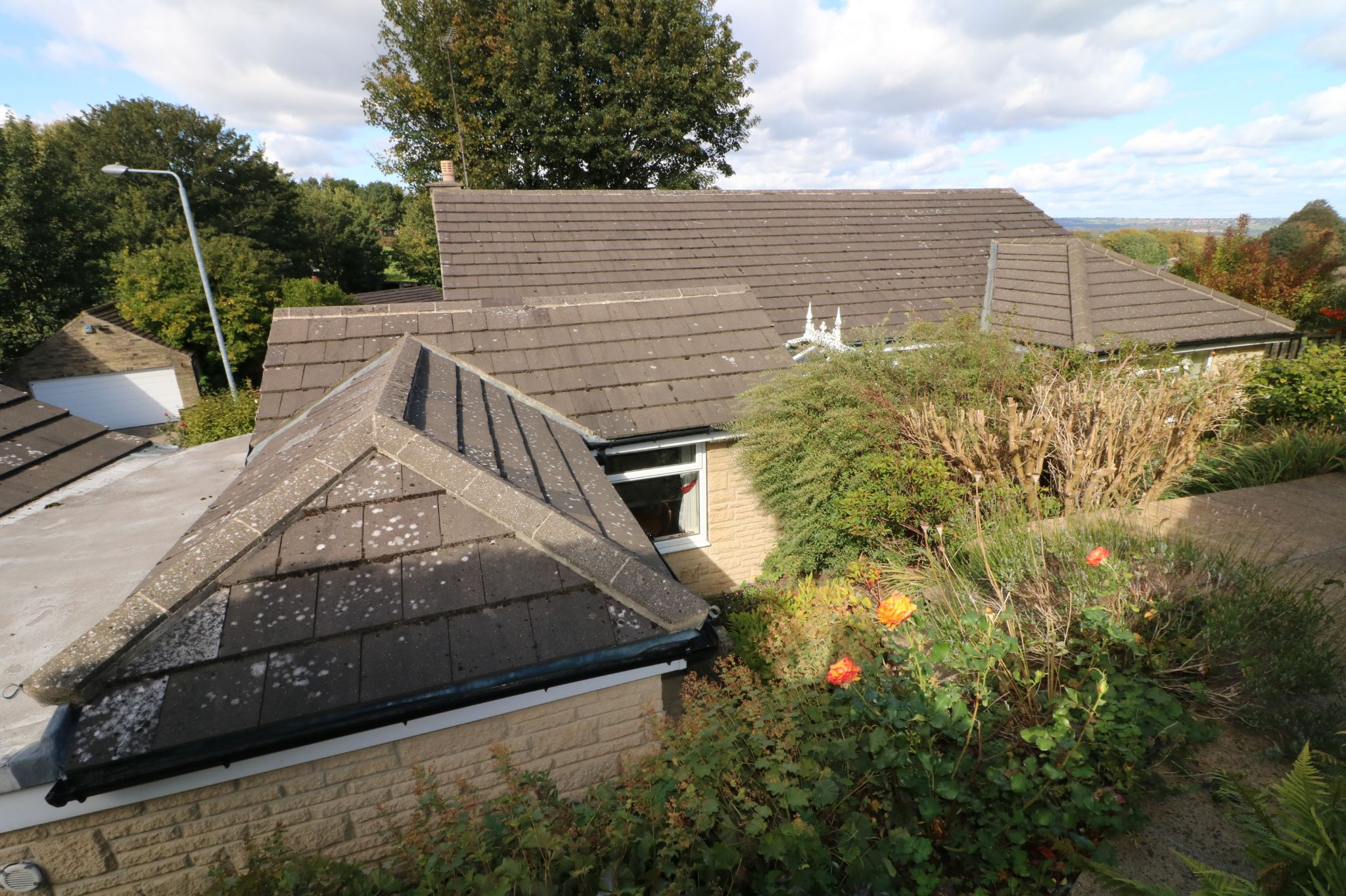 3 Bedroom Detached Bungalow For Sale - Photograph 24
