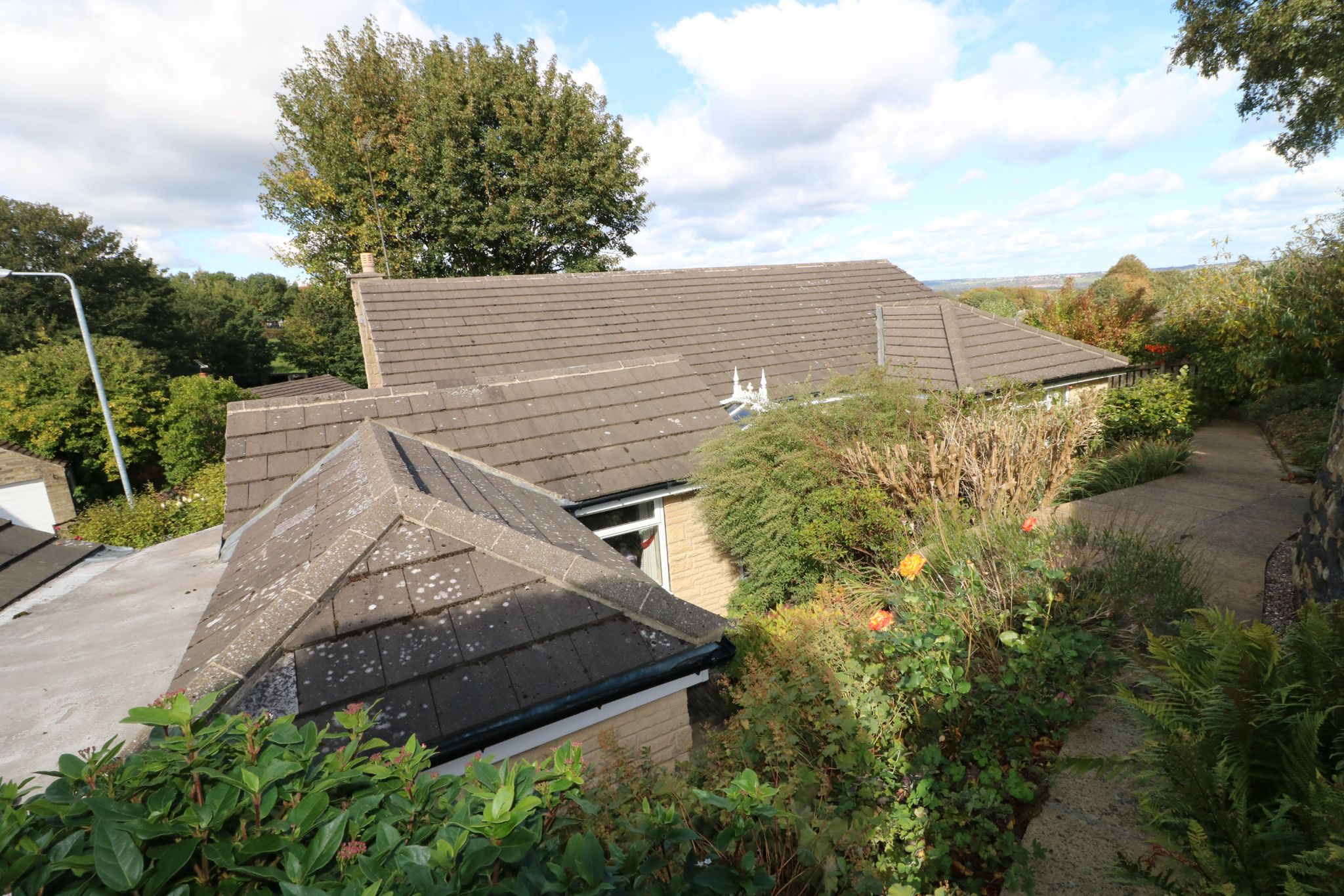 3 Bedroom Detached Bungalow For Sale - Photograph 22
