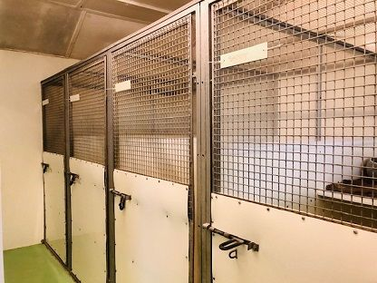 Kennels/cattery For Sale - Photograph 15