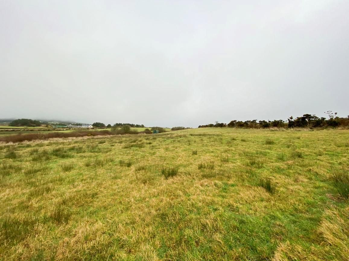 Plot Land For Sale in Santon - Photograph 1