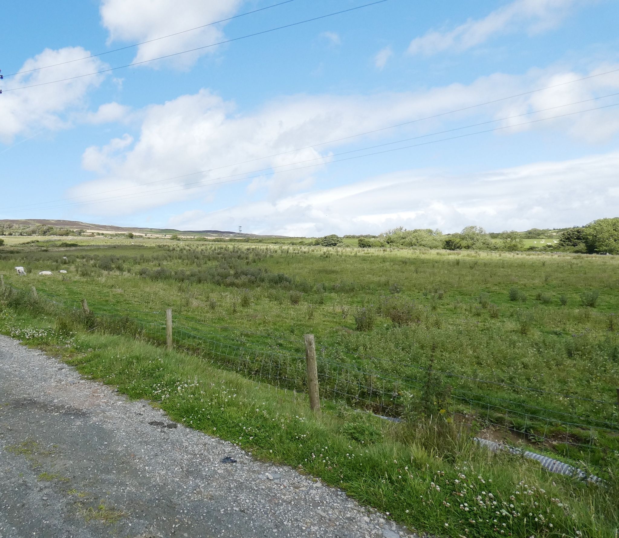 Farm For Sale in Abbeylands, Onchan - Photograph 1
