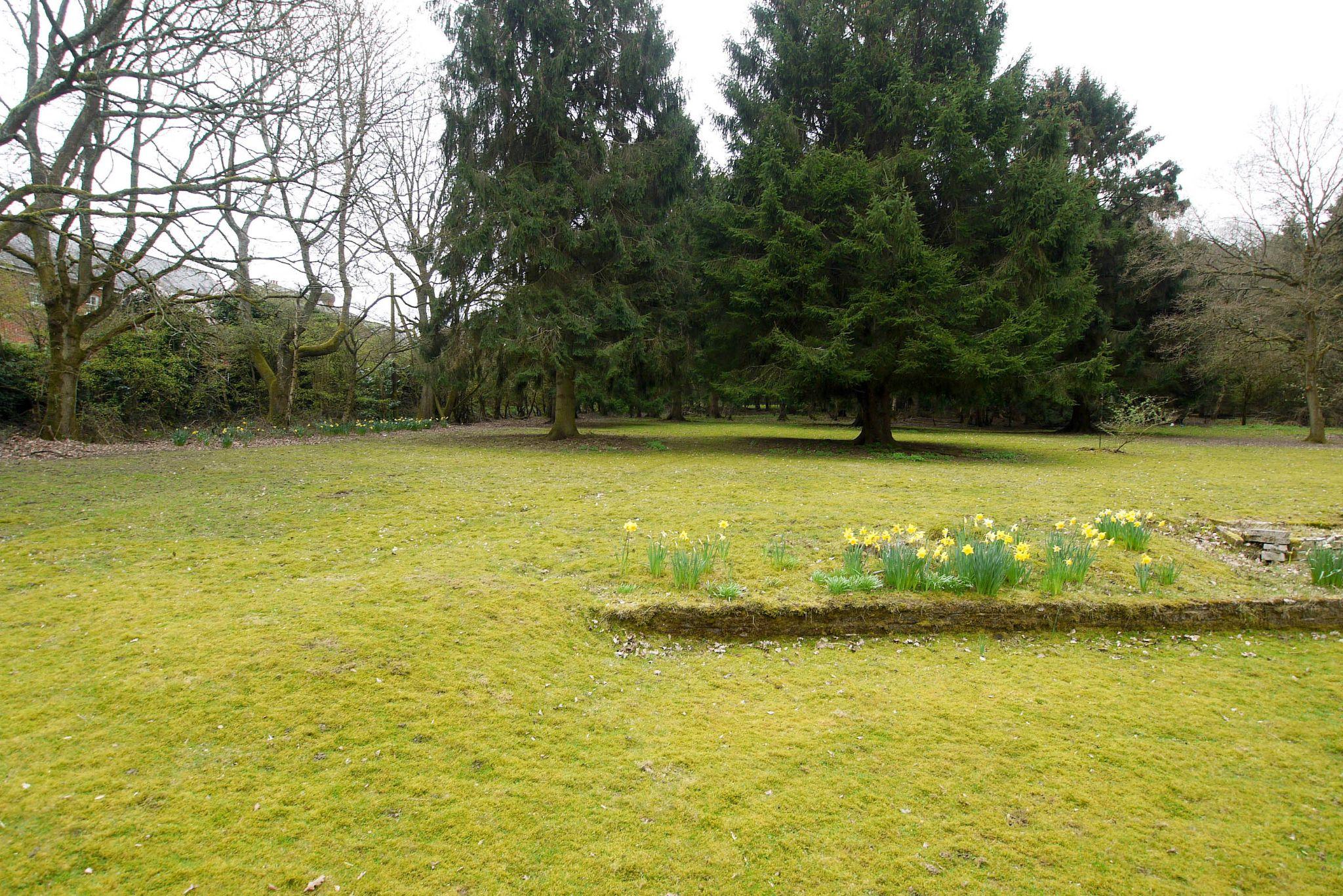 2 bedroom detached bungalow Sold in Sevenoaks - Photograph 9