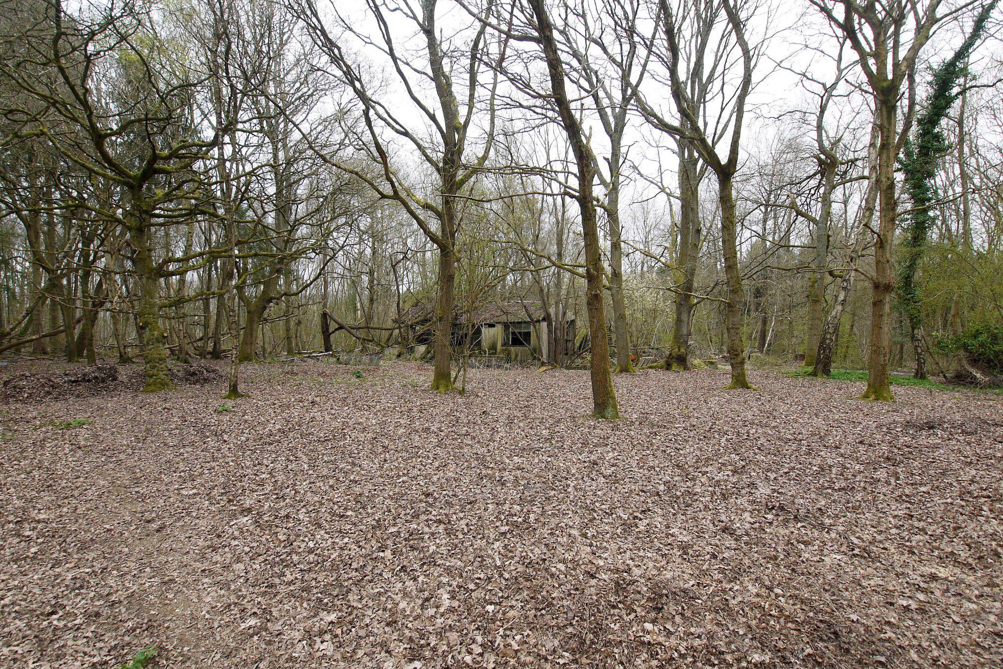 2 bedroom detached bungalow Sold in Sevenoaks - Photograph 12