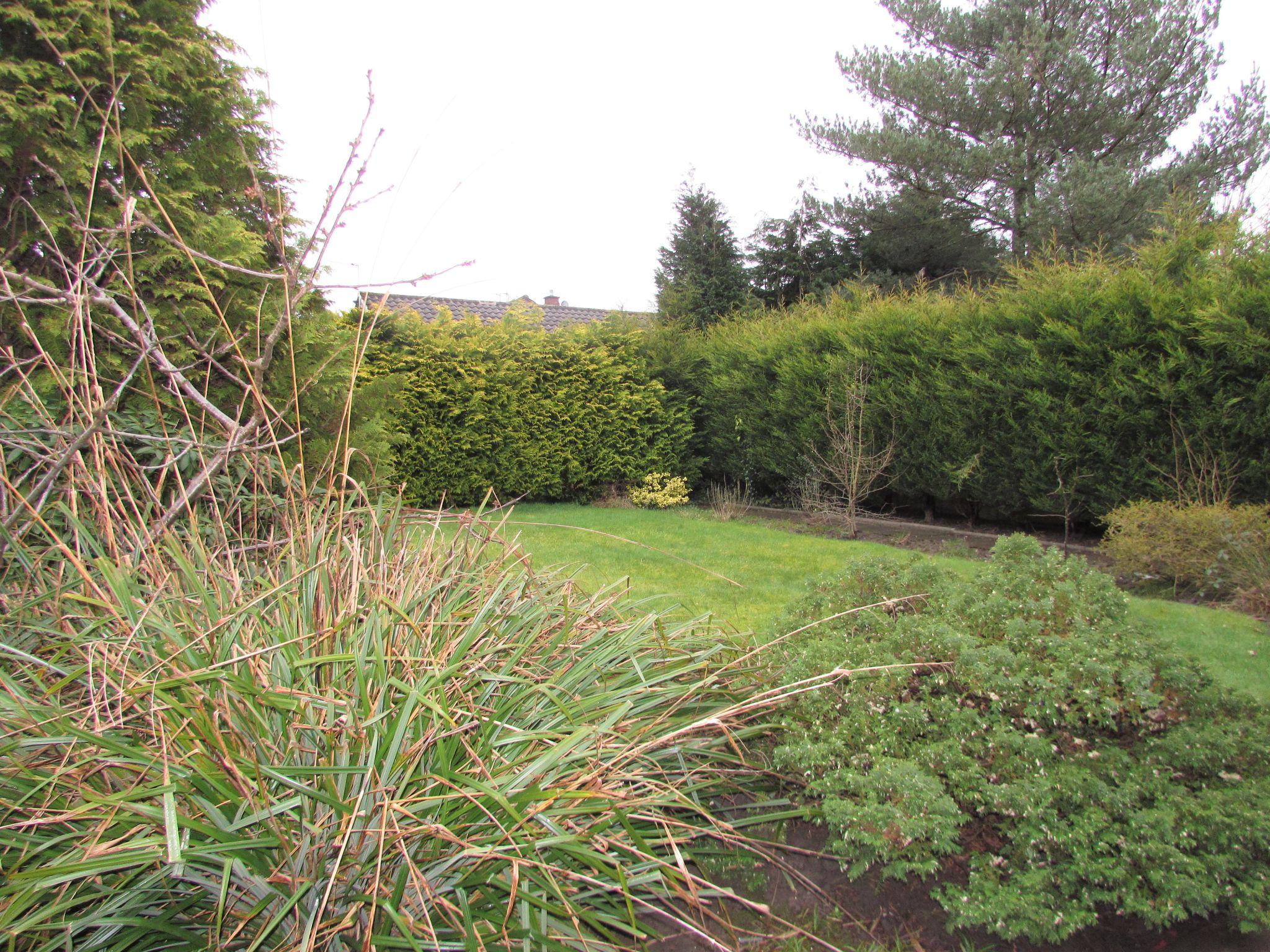 4 Bedroom Detached House To Rent - Rear Garden