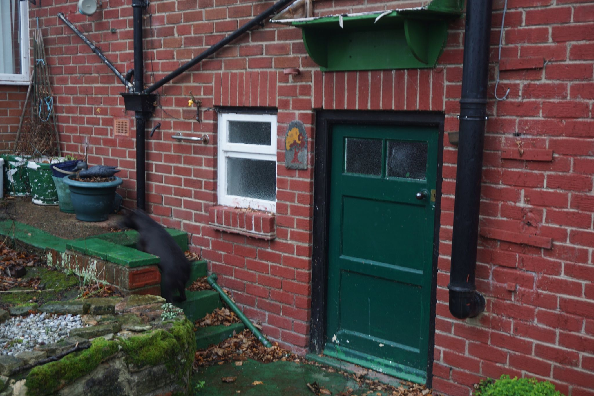 2 Bedroom Detached Bungalow For Sale - Cellar Entrance